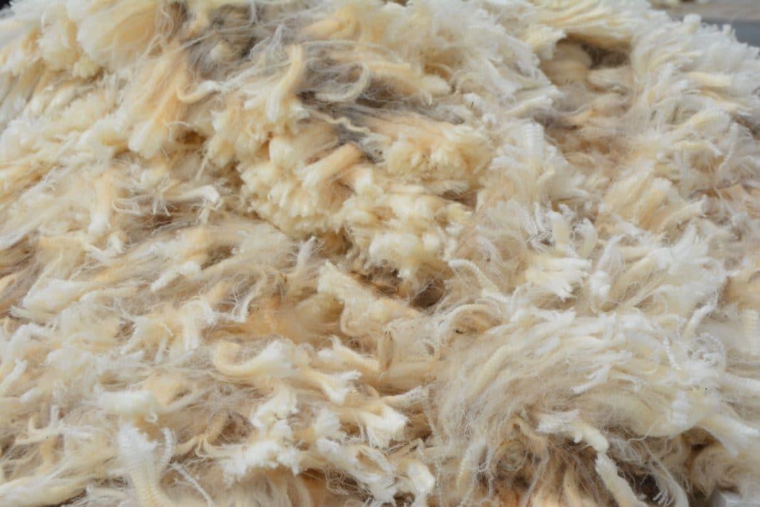 wool, wool market, wol