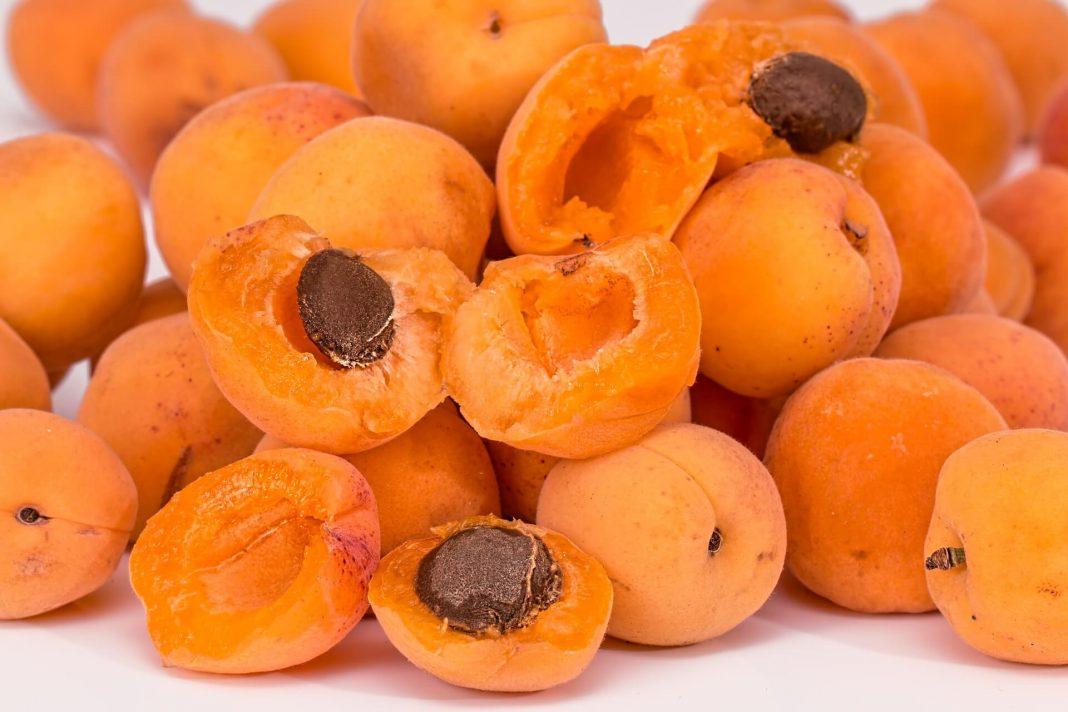 RSG Landbou, appelkose