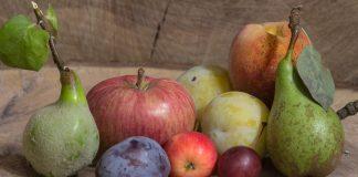 pome fruit stone fruit