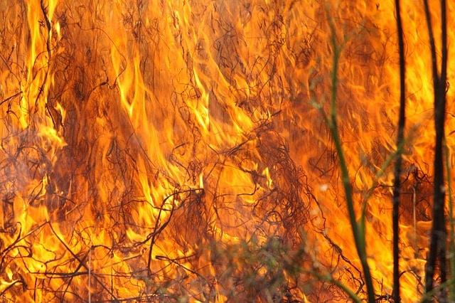 Wes-Kaap brande