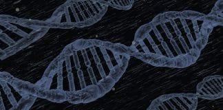 Genomiese, teelwaardes